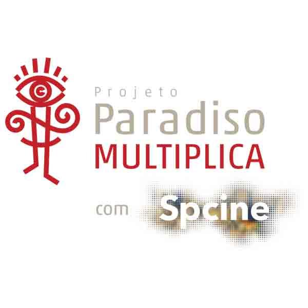 Paradiso Multiplica completa um ano com 50 ações realizadas